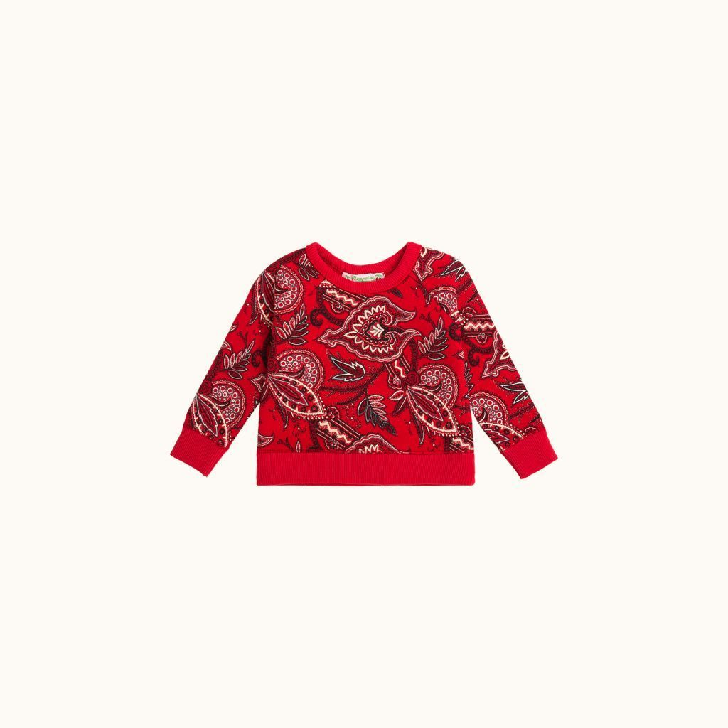 Babies' sweatshirt Brick red